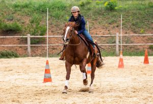 Suite au 1er Championnat Régional d'Equitation Western du CREO