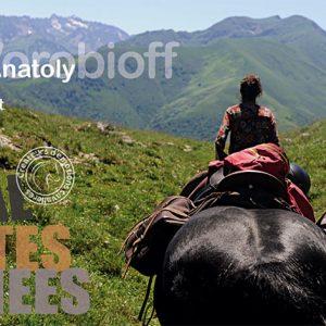 cheval-hautes-pyrenees