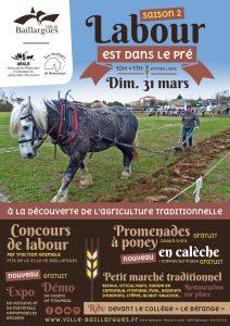 Concours attelage en Occitanie