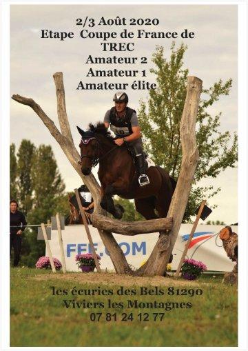 Calendrier Concours Cso 2020.Etape Coupe De France Trec Amateur 2 Et 3 Aout 2020 Comite